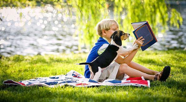 Ребёнок и чтение книг