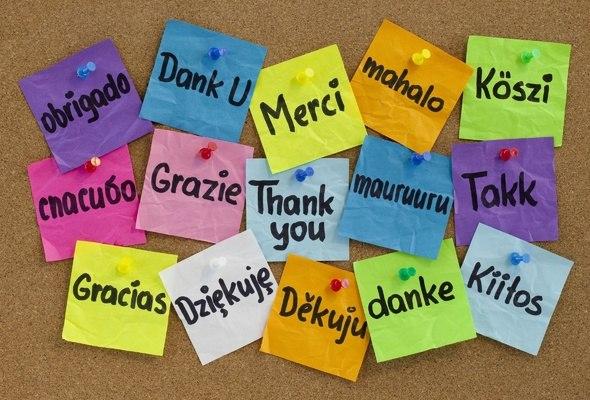 Эффективные методики изучения иностранного языка