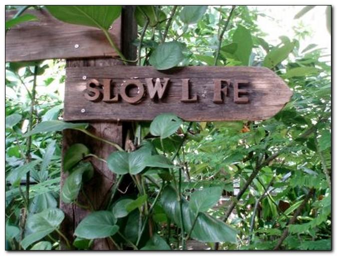 """5 концепций движения """"Slow Life"""" под девизом - """"живи медленно!"""""""