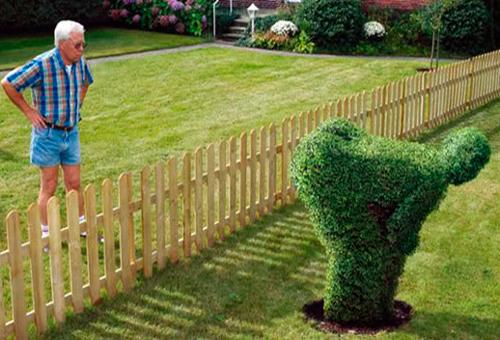 отношения с соседями