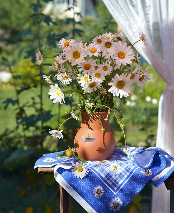 Ромашка символ праздника День семьи